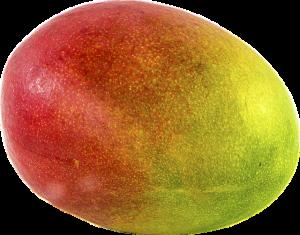 mango-1218147_640
