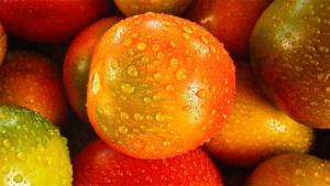 fruit-192753__340