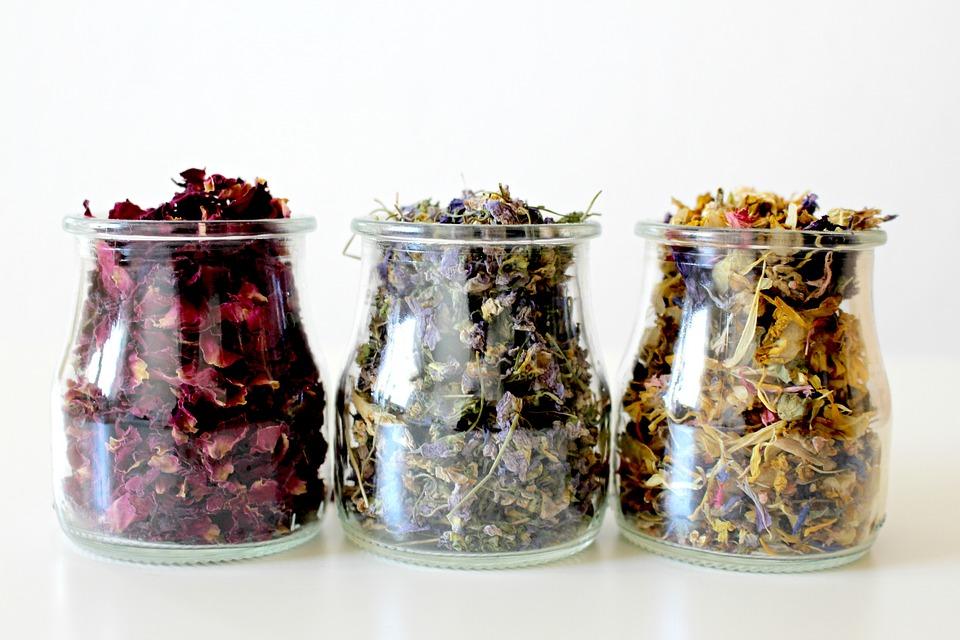 Sušení bylinek - co sbírat a jak a kde sušit